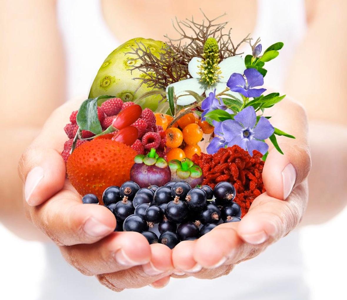 Qué es la nutrición ortomolecular