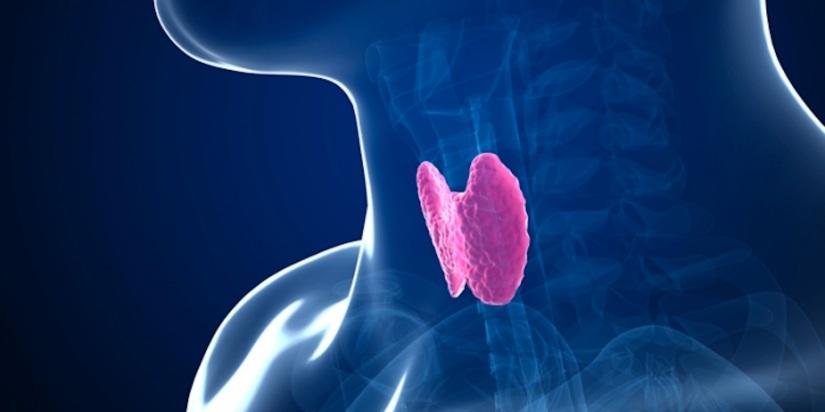 Tratamiento ortomolecular del hipotiroidismo