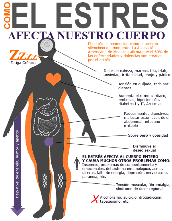 Efectos del estrés en el cuerpo